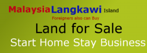 homestay business home stay business
